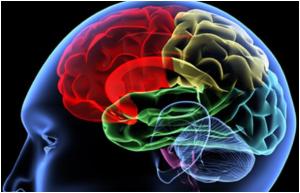 Tumore cervello,in Gb laser-penna per operazioni piu' precise