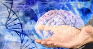 Stimolare circuiti neurali del piacere può frenare tumori