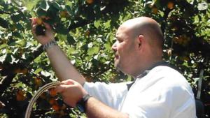 Vincere il caldo: con frutta e verdura del territorio