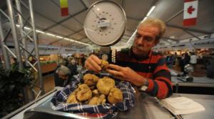 Show cooking chef stellati per clou Fiera Tartufo d'Alba