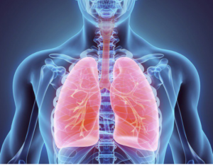 """Salute: Al via Io respiro, pneumologi e spirometrie """"gratis a over 65"""""""