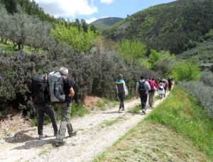 Viaggi a piedi: perché provare il Cammino Francescano della Marca