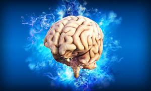 """Il te' potrebbe difendere il cervello """"dall'invecchiamento"""""""