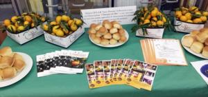 Ottava edizione della Festa del Mandarino dei Campi Flegrei