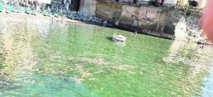 Riva Fiorita: torna l'incubo mare sporco