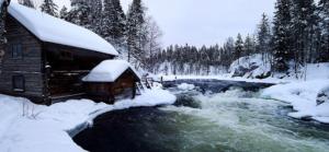 Viaggio In Finlandia :Il Natale come segno di speranza e rinascita