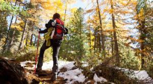 Trekking in montagna: consigli per le camminate