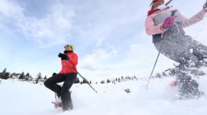 Turismo: su piste Fvg si scia con lo skipass online