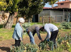 L'agricoltura campana per un nuovo modello di welfare