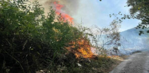 Incendi a Somma Veusuviana, le fiamme invadono strade e la linea ferroviaria, ora tolleranza zero